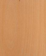 Oberflächen-Muster Furnier Buche